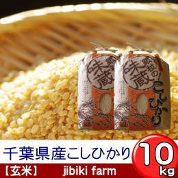 【玄米】 29年産 千葉県産こしひかり 10kg